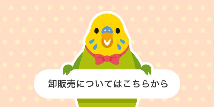 バードストーリー BIRDSTORY 店舗様向け卸売り