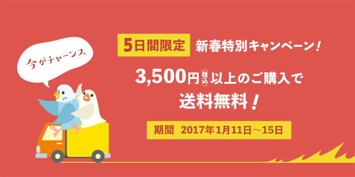 新春特別キャンペーン♪3,500円以上のご購入で送料無料!
