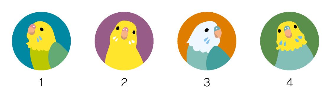 マグネットデザイン 鳥の種類インコ