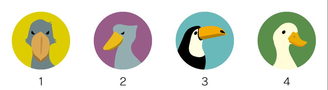 マグネットデザイン 鳥の種類ハシビロコウなど